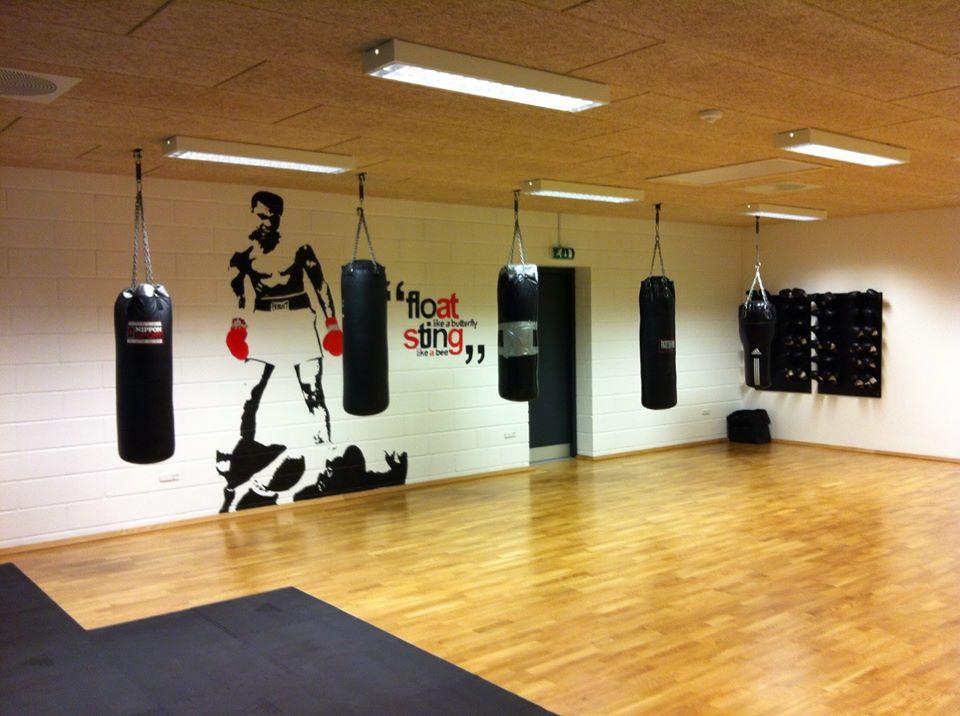 Ans Motion's nye bokserum klar til kamp!